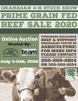 Beef Sale Poster
